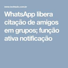 WhatsApp libera citação de amigos em grupos; função ativa notificação