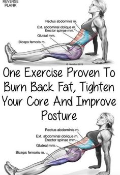 One Exercise Proven To Burn Back Fat, Tighten Your Core And Improve Posture(Vide. One Exercise Proven To Burn Back Fat, Tighten Your Core And Improve Posture(Video Tutorial) – Toned Chick Für Gesundheitstipps unter Interessante-ding. Fitness Workouts, Gewichtsverlust Motivation, Fitness Diet, Yoga Fitness, At Home Workouts, Health Fitness, Muscle Fitness, At Home Back Exercises, Gym Workouts To Lose Weight