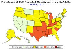 America's Fattest States: Are You Living in One?