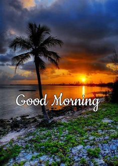 Good Morning Friends Images, Good Morning Love Messages, Good Morning Images Download, Good Morning Greetings, Good Morning Happy Saturday, Good Morning Nature, Happy Morning Quotes, Morning Msg, Lovely Day Quotes
