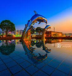 Dolphin Sunset (III) - Hong KongYou can find Nikon and more on our website. Interior Photography, Night Photography, London Architecture, Commercial Architecture, London Photographer, London Underground, Dolphins, Hong Kong, Nikon
