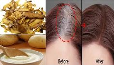 » Get Rid Of Gray Hair For Good: All You Need Is One Ingredient And The Results Will Amaze You!