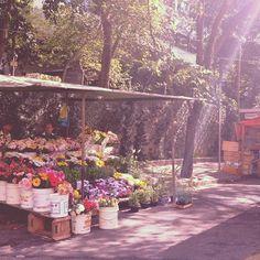 Feira Livre - Rua Caoywaa, altura do número 2046, Sumaré - São Paulo, toda quarta-feira, das 6h às 13h / Pastel da Maria, considerado o melhor de SP. Por @deandreucci