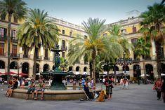 Since its cruise port sits so close to the city center, Barcelona is ideal for independent shore excursions. This is the perfect way to spend your day.