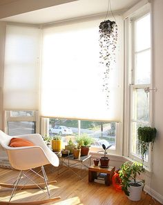 reading, sunny, plants, eames rocker, white