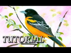 How to paint a realistic bird with Acrylic - YouTube
