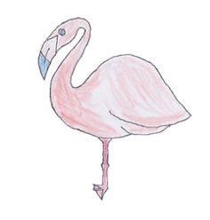 スタンプ第4弾。絶滅危惧種「アンデスフラミンゴ」の愛らしいイラスト。基本は1羽で行動しているが、とても寂しがり屋。 http://line.me/S/sticker/1016995