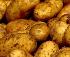 Gardening ABC: Potato Growing Tips