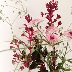 Flores de inverno nos nossos arranjos. #decoracaocriativa #decoração #floweroftheday #flores #arranjofloral #oitominhocas