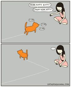 Cats will be cats! :)