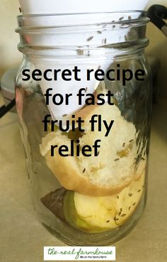 How to get rid of fruit flies naturally- the best way. Results in 5 minutes! How to get rid of fruit flies naturally- the best way. Results in 5 minutes! Fruit Flies In House, House Bugs, Getting Rid Of Nats, Diy Fruit Fly Trap, Fruit Fly Traps, Fruit Fly Killer, Homemade Fruit Fly Trap, How To Get Rid Of Gnats, Fruit Fast