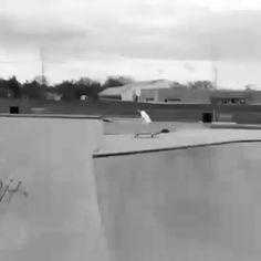 Instagram #skateboarding video by @muirski - #bowl #skateboarding #indy #air. Support your local skate shop: SkateboardCity.co