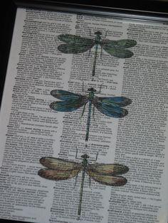 BOGO SALE Dictionary Art Print Dragonfly by HamiltonHousePrints