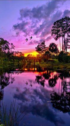 Purple sunset over Riverbend Park in Jupiter, #Florida ACFilters4Less.com #ACFilters