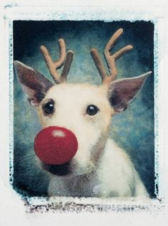 In 1990, she was an always-classic Rudolph the red-nosed reindog!