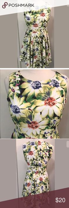 """Aryeh floral daisy dress gorgeous ARYEH  Size Small Purchased at sample sale Stretchy polyester NEW never worn Hidden back zip Bodice is fitted, skirt is full/pleated   Measurements (laying flat, unstretched) Under arms across back 17"""" Waist 28"""" Shoulder to hem down back is 33.5"""" aryeh Dresses Midi"""