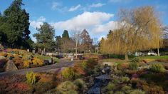 Tthe Bellwood Heather Collection in Perth Perth, Scenery, Photos, Pictures, Country Roads, Collection, Humor, Scotland, Paisajes
