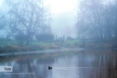 Morning Mist by wilwilgao123. Please Like http://fb.me/go4photos and Follow @go4fotos Thank You. :-)