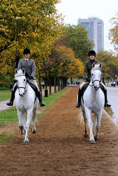 Riding in Hyde Park, London.