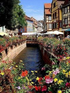 Colmar Find Super Cheap International Flights to Strasboursg, France https://thedecisionmoment.com/cheap-flights-to-europe-france-strasbourg/
