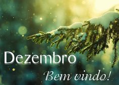 Bem Vindo Dezembro -