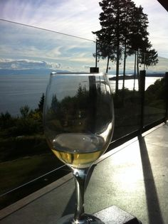 Barooga  Sunshine Coast  Chardonnay on the Pacific Ocean!
