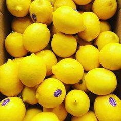 When life gives you lemons, don't put them in your drink. #lemontree #lemonwater #lemonade #health #lemons