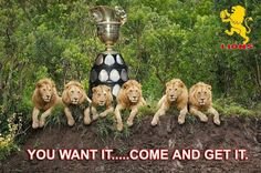 South African top domestic rugby team.