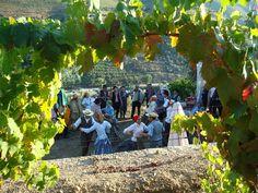 Festas e Romarias -rancho do Douro