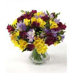 buchete frezii, buchet de frezii, florarie online, flori la comanda