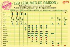 Le calendrier des légumes de saison : finis les légumes venus du bout du monde ! Avec ce calendrier, vous ne cuisinerez plus que des légumes de saison (à mettre sur le frigo !).