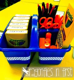 Dragonflies in First- community supplies, crayons labeled.