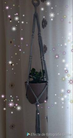 Cotton Plant, Potted Plants, Plant Hanger, Macrame, My Etsy Shop, Unique Jewelry, Handmade Gifts, Check, Pot Plants