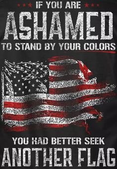 If you are a true Patriot American. This flag should bring pride. And quit with all the racist bullcrap! American Freedom, American Spirit, American Pride, American Flag, American Independence, American History, Native American, Patriotic Pictures, Patriotic Quotes