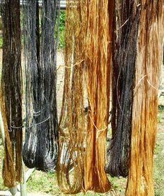 kakishibu... traditional natural dye from Japan