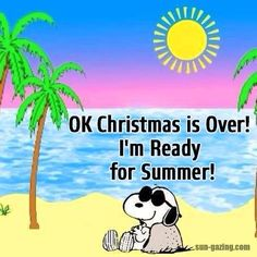 Ok Christmas Is Over I Am Ready For Summer Quote Snoopy Quote funny quotes quote jokes snoopy lol funny quote funny quotes funny sayings humor snoopy quotes Christmas Is Over, Snoopy Christmas, Summer Christmas, Coastal Christmas, Christmas Vacation, Christmas Games, Snoopy Love, Snoopy And Woodstock, Peanuts Cartoon