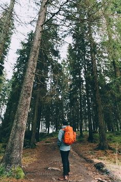 Incredible Travel Products You Didn't Know You Needed Oslo forest hikes Go to iBoatCity.com and use code PINTEREST for free shipping on your first order! (Lower 48 USA Only). Sign up for our email newsletter to get your free guide: Boat Buyer's Guide for Beginners.