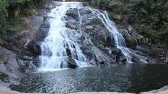 Who does not love hiking? Especially if you are young and adventurous then magoebaskloof hiking trail is an amazing option for you. The magoebaskloof hiking trail gives you the opportunity to hike around the Debegeni waterfall. For more information visit us at: http://magoebaskloofgetaway.co.za/hiking-trail/