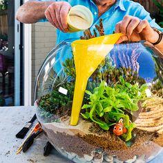 to make a beachy terrarium Use a funnel when adding sand to a beachy terrarium!Use a funnel when adding sand to a beachy terrarium! Terrarium Diy, How To Make Terrariums, Terrarium Wedding, Diy Garden, Garden Projects, Indoor Garden, Garden Ideas, Fruit Garden, Air Plants
