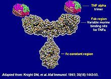 trade name Remicade) is a monoclonal antibody against tumour necrosis factor alpha (TNF-α) used to treat autoimmune diseases. Oncology Nursing, Pharmacology Nursing, Psoriatic Arthritis, Ulcerative Colitis, Crohns Awareness, Chronic Inflammatory Disease, Ankylosing Spondylitis, Medicine Journal