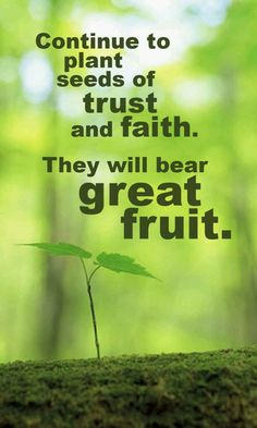 Continue to plant seeds of trust and faith. They will bear great fruit. Faith Quotes, Words Quotes, Wise Words, Life Quotes, Sayings, Biblical Quotes, Quotable Quotes, Quotes Quotes, Bible Verses