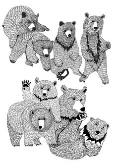 Illustration / bears