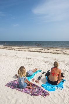 You don't have to go to South Florida for beaches, sun, seafood and fun. North Florida offers that plus unique experiences like natural springs, airboat rides, kayaking, wildlife and fresh seafood too! Check out this list of 18 fantastic things to do in North Florida.  #travel #Florida #vacations #beaches #familytravel #Floridatravel #USAtravel Florida Vacation, Florida Travel, Travel Usa, Vacation Destinations, Vacations, Airboat Rides, Stuff To Do, Things To Do, Road Trip Hacks