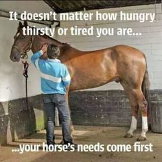 ...Even when I get in from work at an ungodly hour, I know I have to get up early the next day to make sure the horses get their breakfast.