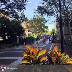 #Penn -How do you make a great first impression?  #Job #VideoResume #VideoCV #jobs #jobseekers #careerservices #career #students #fraternity #sorority #travel #application #HumanResources #HRManager #vets #Veterans #CareerSummit #studyabroad #volunteerabroad #teachabroad #TEFL #LawSchool #GradSchool #abroad #ViewYouGlobal viewyouglobal.com ViewYou.com #markethunt MarketHunt.co.uk bit.ly/viewyoupaper #HigherEd @uofpenn
