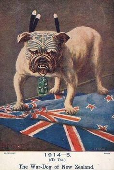 Close up photograph; Copyrighted postcard, Title; 1914 -1915, (Te Toa). The War-Dog of New Zealand.  Artist; Anon. Composition; centred front is a pit bull standing on the N.Z. flag which is placed on top of the Union Jack. The pit bull is adorned with a pounamu tiki, moko, and three huia hou feathers.  Printed lithograph. COPYRIGHT ©