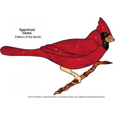 Free Cardinal Patterns | ... Free Stained Glass Patterns (Do Not Add To Cart) > Cardinal Stained