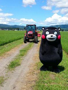 「おーい、そこの熊、危ねえぞー」 via Twitter @neiger_akita #kumamon #bear #kumamoto #japan