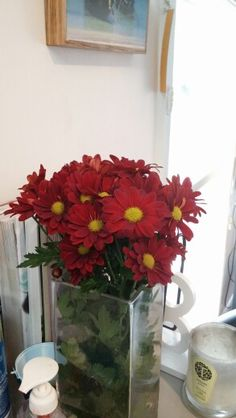 Red flowers Red Flowers, Table Decorations, Plants, Furniture, Home Decor, Homemade Home Decor, Flora, Home Furnishings, Plant