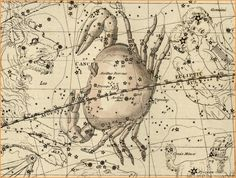 "Cancer the constellation. As represented in the Celestial Atlas (1822) by Alexander Jamieson. Mona Evans, ""Cancer the Crab"" http://www.bellaonline.com/articles/art300306.asp"